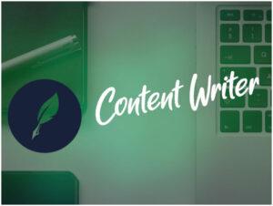 Profesjonalny copywriter gwarancją dobrej jakości tekstu